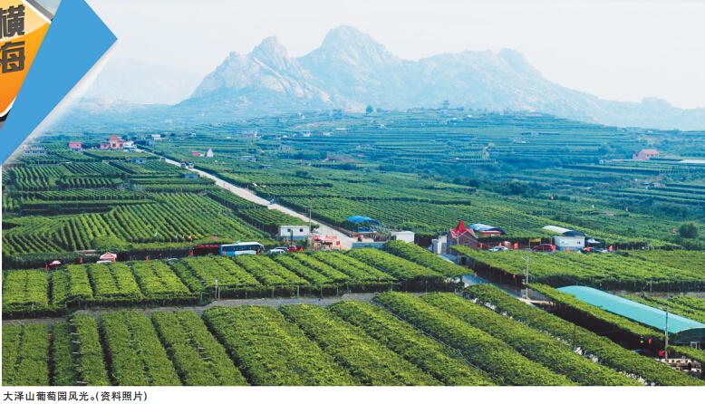 青岛藏马山国际旅游度假区抖音门挑战,热情歌舞表演,小明星艺术大赛