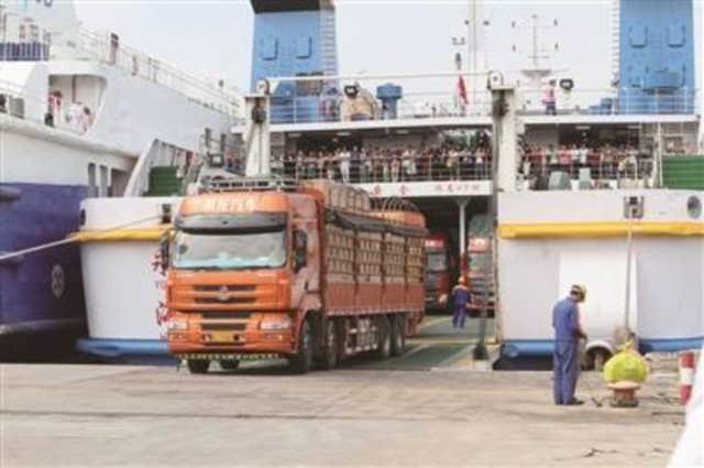 琼州海峡北岸航运整合被指搞拉郎配,国企占股比引争议