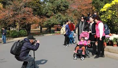 中山公园菊展吸引市民争相拍照