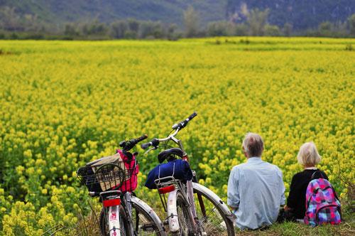 青岛两处入围美丽休闲乡村,山东省休闲农业和乡村旅游