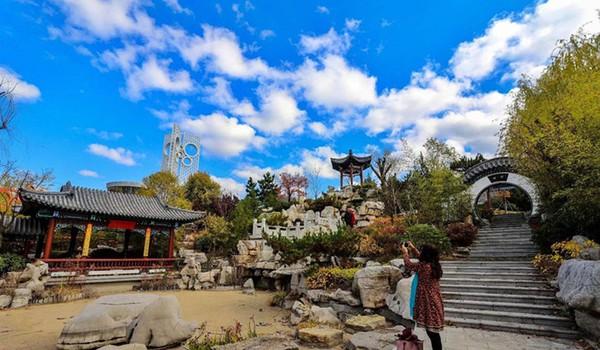 青岛世博园里感受不一样的冬天