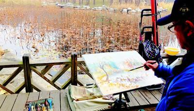 残荷冬韵!中山公园小西湖内荷花枯萎 绘画爱好者取景