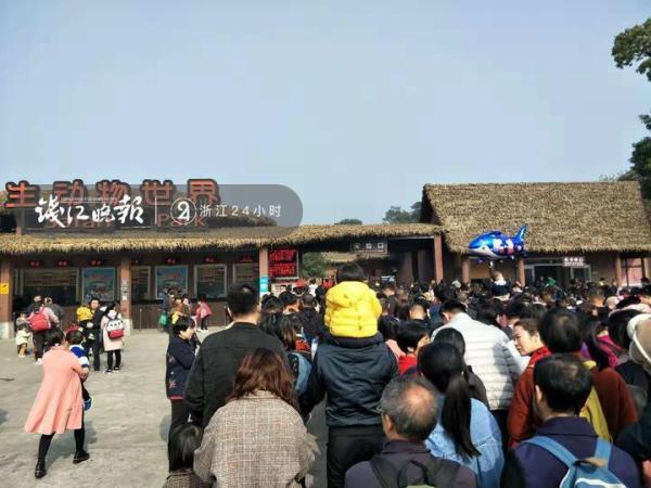 网传杭州富阳野生动物园一只老虎出逃!真相来了