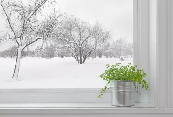 @青岛人 大雪要来!送你一份冬季保暖养生手册,快转给家人吧