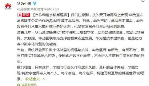 华为回应与袁隆平合作种植水稻:系谣言