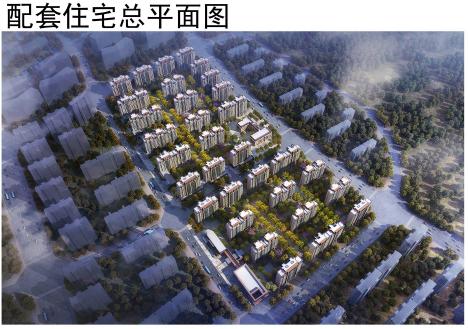 1682户!中国科学院大学(青岛)附属学校配套拘 项目规划公示
