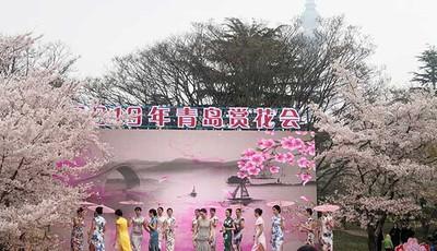 穿汉服诵诗歌 青岛中山公园赏花诗会获点赞