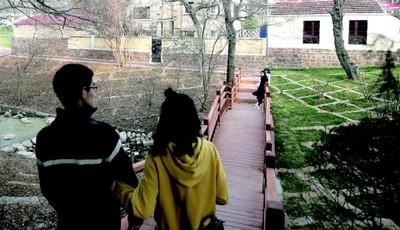 青岛八大关添新景 新建小桥造型美观成拍照新景点