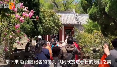 半岛V视 | 青岛崂山风景区迎来旅游旺季 快跟随记者的镜头看看吧!