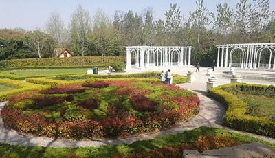 青岛中山公园新建了一处欧式景区 别样风格让人心动