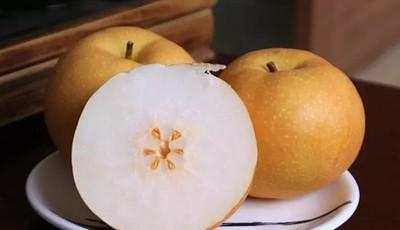 探青岛 【免费试吃】才下枝头就上心头的秋月梨新鲜上市!据说这个梨敢和西瓜比水多敢和蜜糖比甜度!