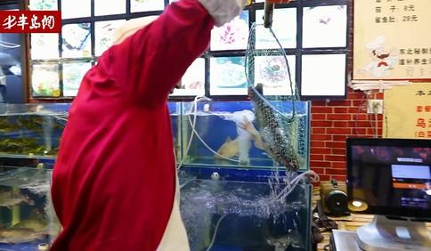 新方式锅台鱼:活鱼现杀 保证客人吃到最新鲜的鱼