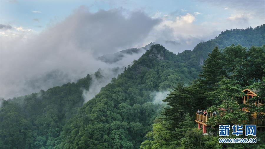 (美丽中国)(1)陕西略阳雨后初霁 森林公园美若仙境