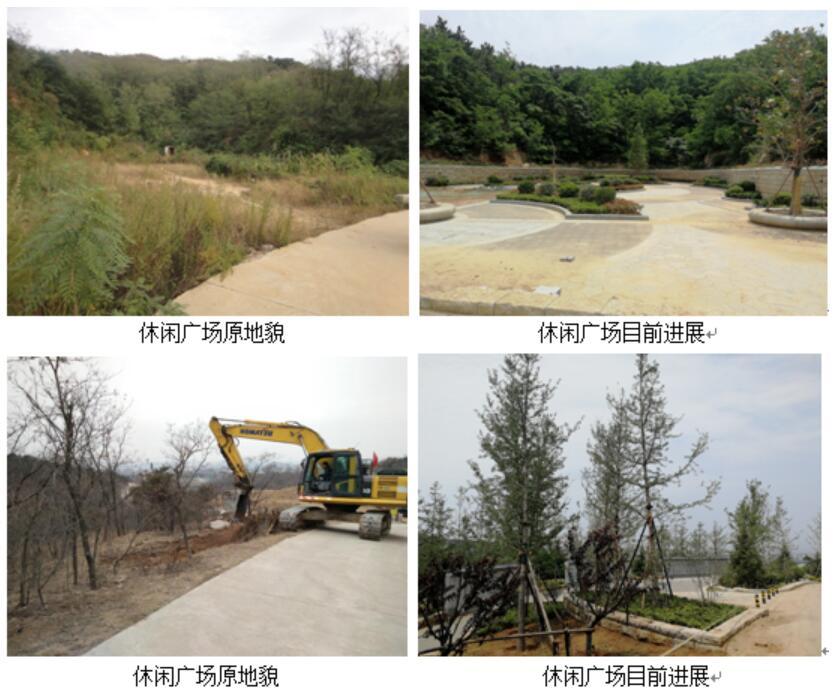 青岛十梅庵公园改造工程进展:部分景观正收尾 项目年底竣工