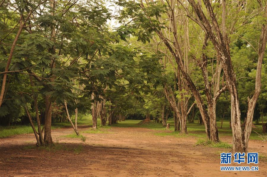 (国际·北京世园会)(1)世界园林巡礼——加纳勒贡植物园