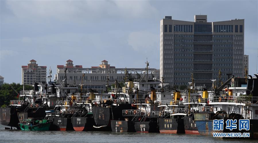 (社会)(1)海口:船舶回港避台风