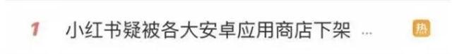 延边巡游:小红书疑被各大安卓收配市肆下架!