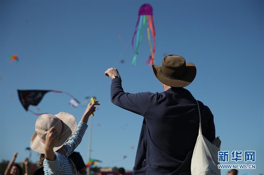 (国际)(1)风筝飞扬