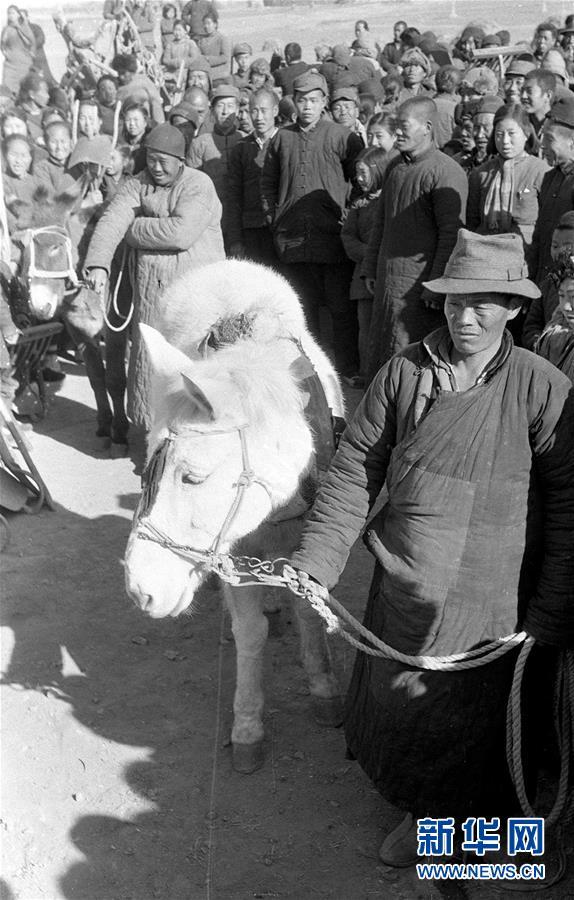 (壮丽70年·奋斗新时代——新中国峥嵘岁月·图文互动)(3)废除封建土地制度