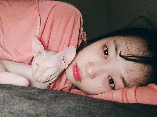 雪莉和她的猫布林