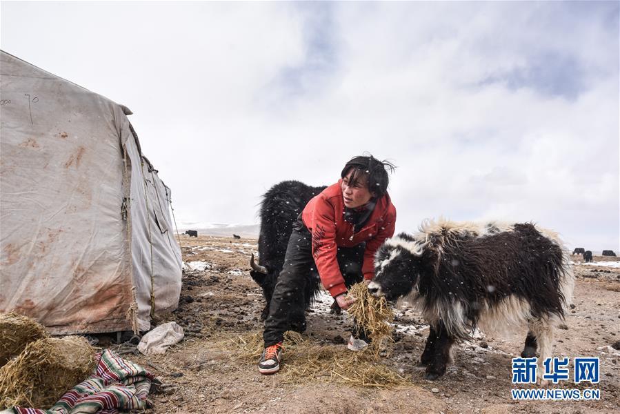 (年终报道·2019看中国)(6)2019,那些暖心的人和事