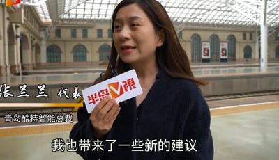 张兰兰代表:保护知识产权,看齐国际水平