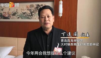 丁连国代表:在新农村建设中,创自有品牌,关注农民增收