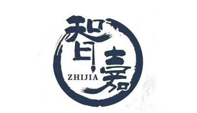 青岛智嘉文化艺术培训学校