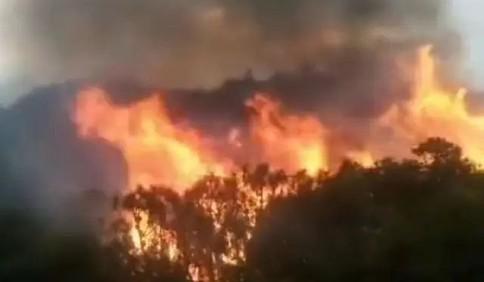四川木里森林火灾:五架直升机投入灭火战斗 超两千人参与扑救