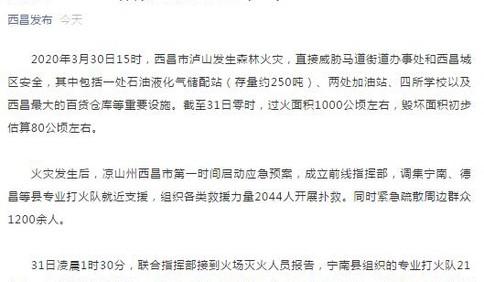 四川西昌山火已致19人遇难 因风向忽变被大火包围