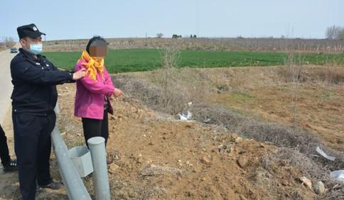 莱西一六旬老太拉走78棵贵重树苗欲当柴火烧 被拘十天