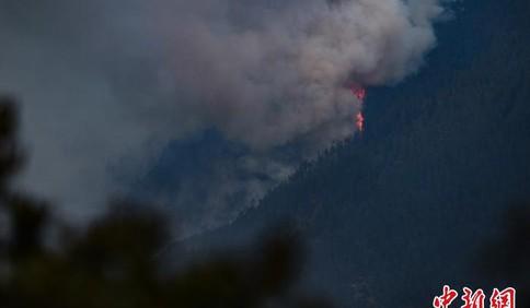 西藏林芝市巴宜区突发森林火灾 正有序扑救暂无伤亡