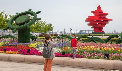 五四广场花卉景观绽放 初夏青岛充满生机活力