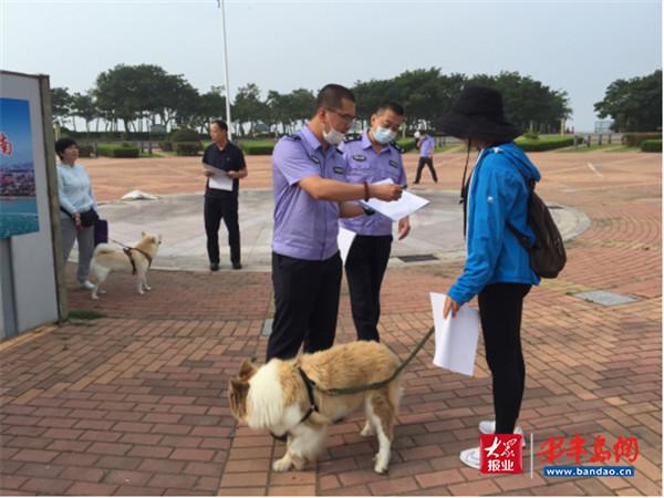 """青岛市农业行政执法支队扎实推进市办实事 向不文明养犬行为""""宣战""""-半岛网"""