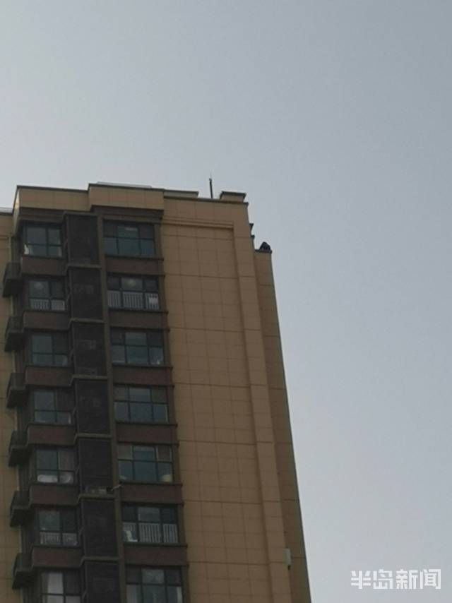 啥事想不开?市北区抚顺路一男子在楼顶坐了三小时 消防公安都来了