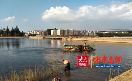 """膠州澄月湖有""""水怪"""" 把水草吃光現水清岸綠景觀"""