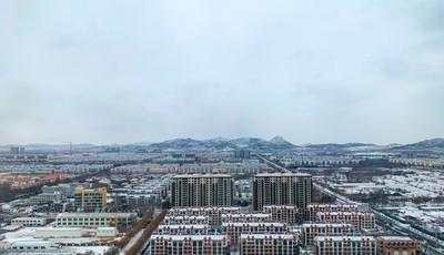 快看!平度白雪皚皚 已美呆