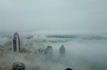 青岛沿海一线雾气缭绕 宛如童话世界