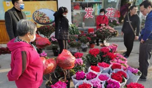 青岛花卉市场:万紫千红迎春节