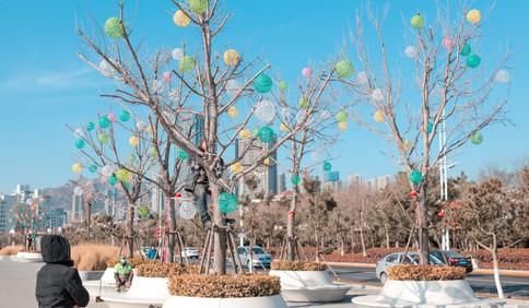 青岛:挂彩灯 迎新春