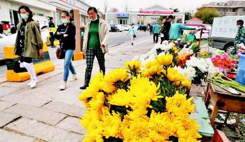 清明祭扫需凭预约码入园 周六周日青岛将迎祭扫高峰