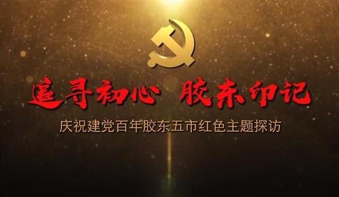 [视频]庆祝建党百年胶东五市红色主题探访:地雷战的发源地原来在这里