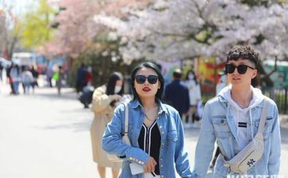 青岛中山公园:市民游园乐翻天
