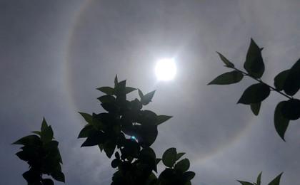 """端午假期太阳被""""套圈""""了 !青岛上空现日晕奇观"""