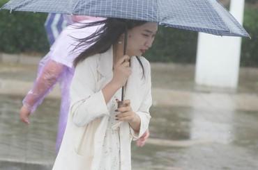青岛:秋风秋雨任飘摇