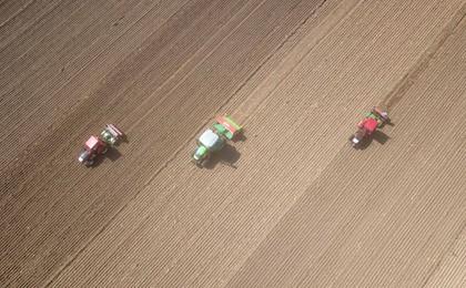 山东:金秋小麦播种忙